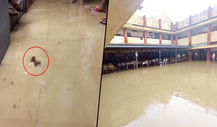आधा घंटा बरसा पानी और खुल गई आपदा प्रबंधन का पोल, DSP Office में तैर रही मछलियां