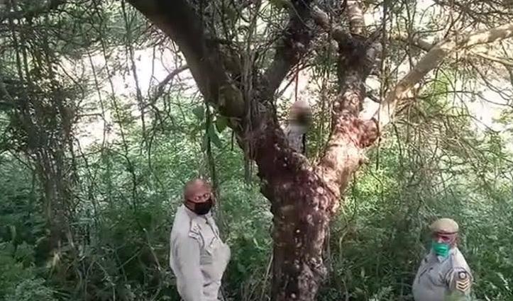 Una: पेड़ से लटका मिला महिला का शव, सिर व पैर पर चोट के निशान
