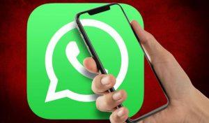 खत्म हुआ इंतजार: WhatsApp ने रोलआउट किए एनिमेटेड स्टीकर्स, ऐसे करें यूज