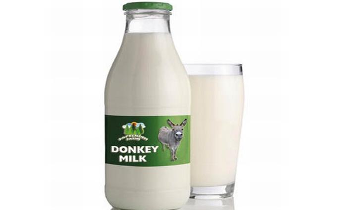 देश में पहली बार बिकेगा गधी का दूध, तीन बड़ी बीमारियों से लड़ने की क्षमता ; 7,000 होगी कीमत