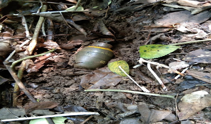 Kangra: जंगल में मिला हैंड ग्रेनेड, इलाका सील- बम निरोधक दस्ता बुलाया