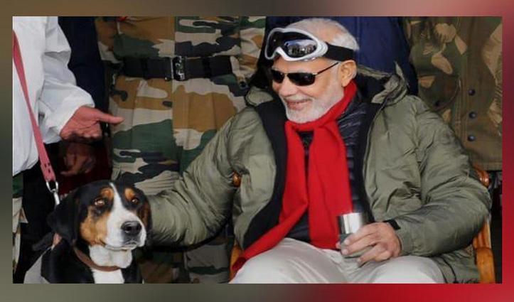 PM मोदी बोले- भारतीय नस्ल के Dogs पालने के बारे में सोचें, हिमाचली हाउंड को बताया अच्छी नस्ल