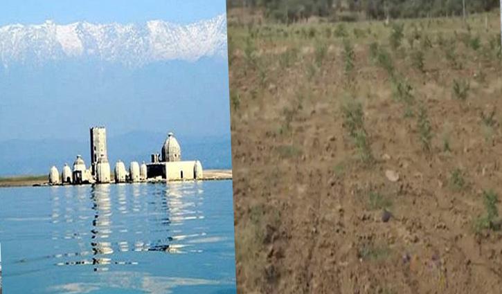 Rajasthan में भू माफिया फर्जी दस्तावेजों से हड़प रहा पौंग बांध विस्थापितों की जमीन
