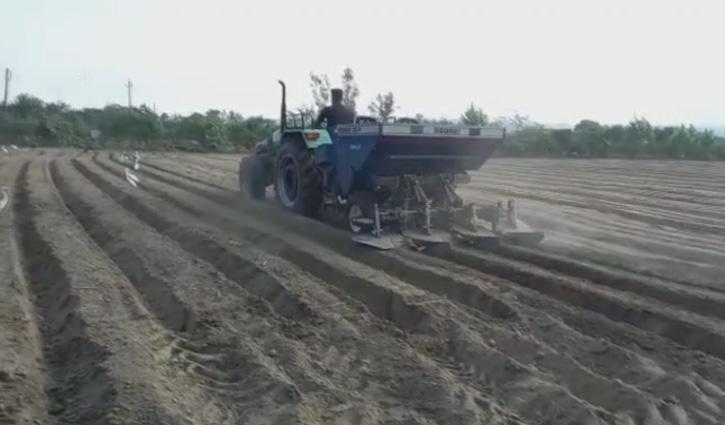 आलू बीज की आसमान छूती कीमतों ने तोड़ दी कृषि कारोबार की कमर, बिजाई से पीछे हटने लगे Farmers