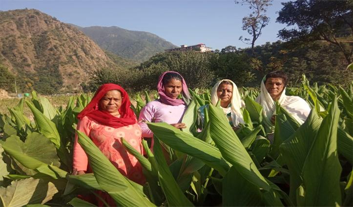 Himachal का एक गांव ऐसा जहां की महिलाएं बन चुकी हैं आत्मनिर्भर