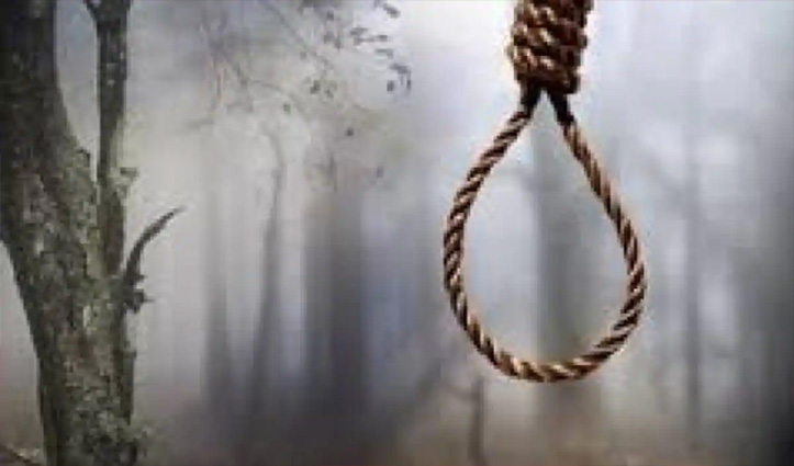 Sundernagar: समकल में पेड़ पर लटका मिला 22 वर्षीय युवक का शव, 10 फीट दूर पड़ा था Mobile
