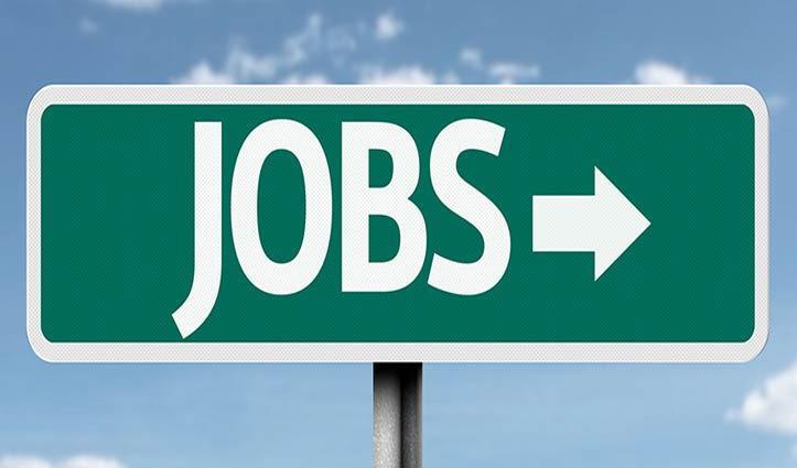 डीसी कार्यालय #Kinnaur में भरे जाएंगे 12 पद, यह लोग कर सकते हैं Apply