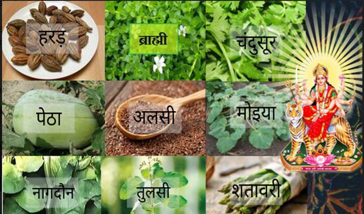 #Navratri_Special : इन 9 औषधियों में विराजती हैं नवदुर्गा, सेवन से ठीक होंगे गंभीर रोग