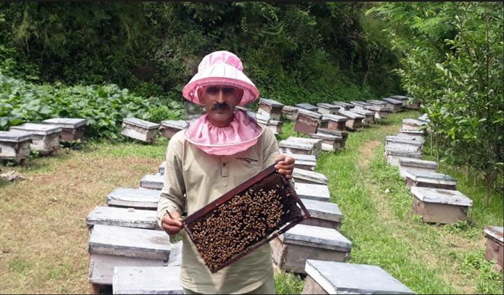 शहद की मक्खियों से रोजगार की मिठास, Mandi के मनोज कुमार ने रची सफलता की कहानी