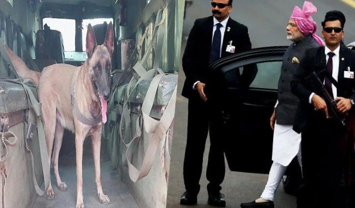 अटल टनल: PM मोदी के कार्यक्रम पर खतरे का साया, ओबामा को सुरक्षा देने वाला डॉग स्क्वॉड तैनात