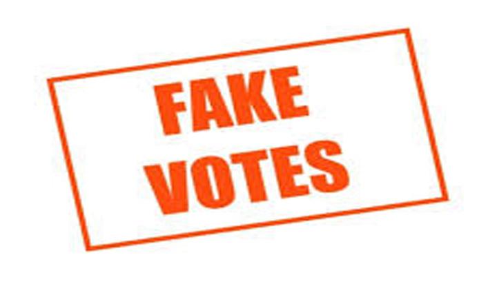 Himachal की इस नगर परिषद में 96 Fake Votes किए रद्द, वेरिफिकेशन के बाद कार्रवाई