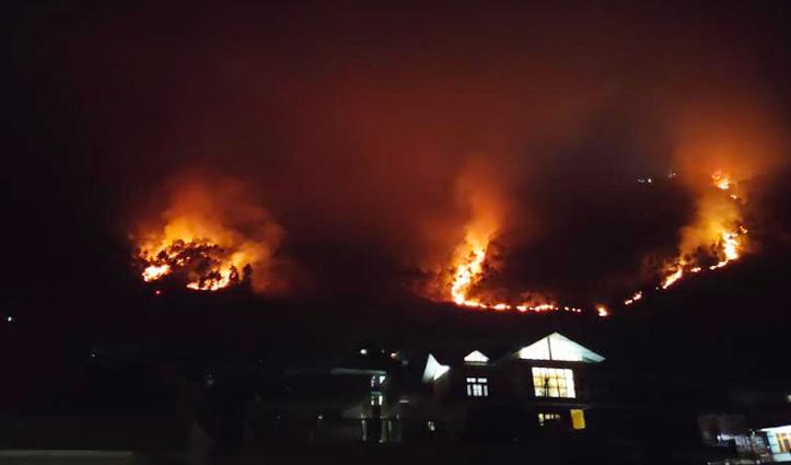 Kullu में पीज के जंगलों में लगी भयंकर आग, लाखों रुपये की वनसंपदा हुई राख