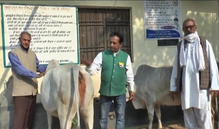 गौ सेवा समिति जामली धाम का प्रयासः गाय के गोबर से बने दियों से रोशन होंगे गौ भक्तों के घर