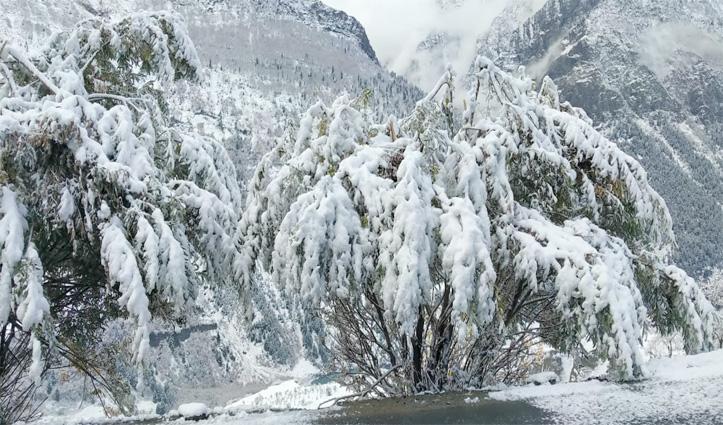 लाहुल घाटी में #Snowfall का दौर, रोहतांग दर्रा पर्यटकों के लिए किया बंद