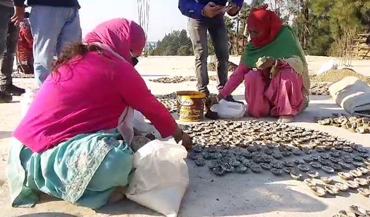 #Solan: गोबर से बनी लकड़ियों से होगा दाह संस्कार, महिलाएं करेंगी तैयार