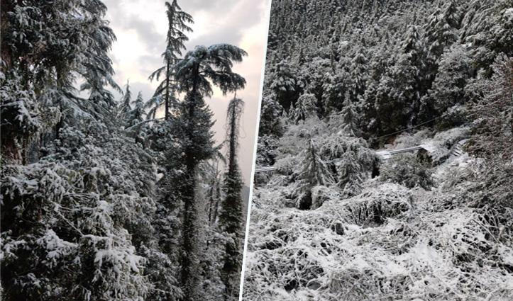 #Snowfall के बीच फंसे सभी पर्यटक सुरक्षित, Quick Reaction Team ने करेरी गांव पहुंचाए