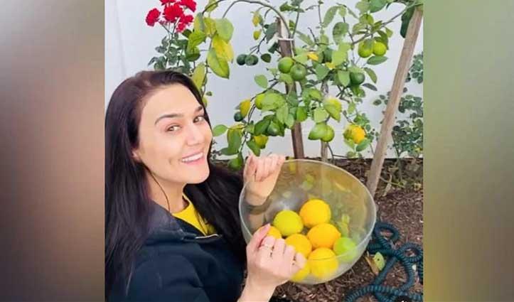 प्रीति जिंटा ने California के घर में की खेती, वीडियो शेयर कर बताया ये सब