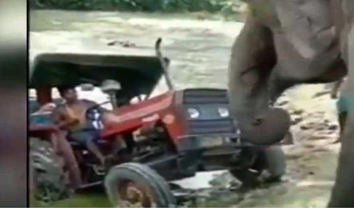 दलदल में फंसी थी Tractor Trolley, अचानक सामने आया हाथी और फिर हुआ ये