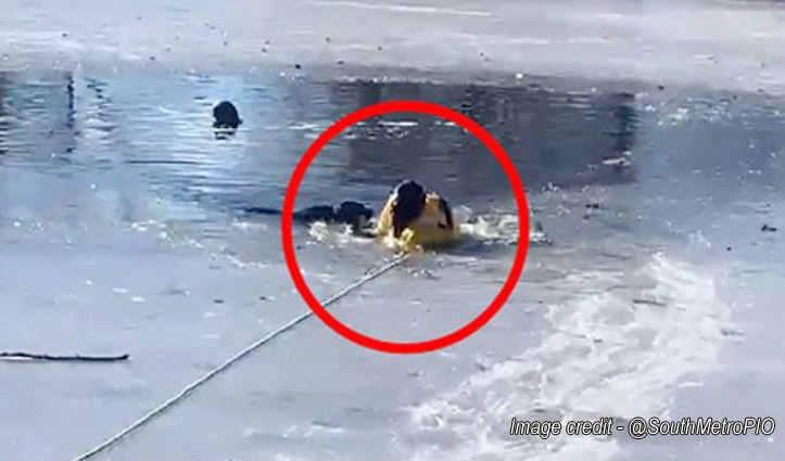 बर्फ से जमी नदी में कूदा फायरफाइटर, अंदर फंसा था कुत्ता - फिर जो हुआ देखें Video