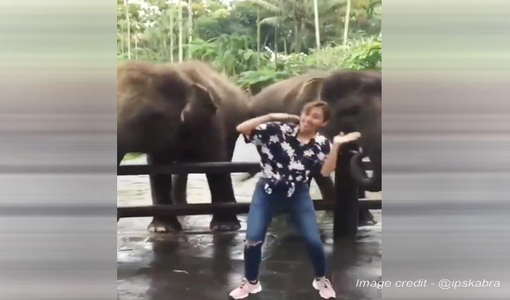जब लड़की को Dance करते देख हाथी भी करने लगे डांस, फिर जो हुआ देखें Video
