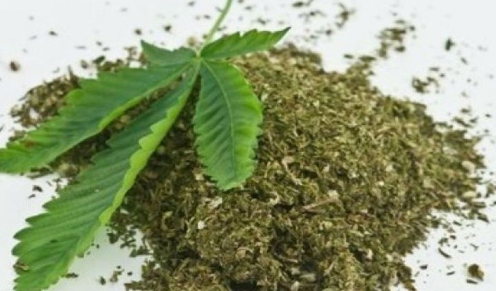 200KG ड्रग्स मामले में कैबिनेट मंत्री का दामाद गिरफ्तार, NCB ने की कार्रवाई