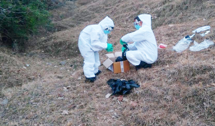 #Birdflu : मंडी में मृत मिले पक्षियों की जालंधर भेजे सैंपल की रिपोर्ट में हुआ बड़ा खुलासा, पढ़ें