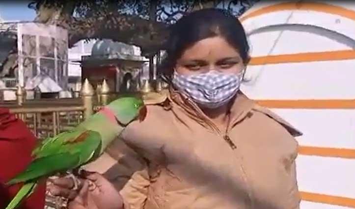 Bilaspur: श्री नैना देवी में पहुंचा गंगू तोता, श्रद्धालुओं ने ली Selfi-बनाई वीडियो