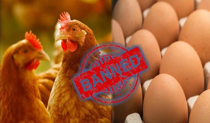 #BirdFlu बाहरी राज्यों से आने वाले Poultry Products पर रोक एक सप्ताह बढ़ाई गई