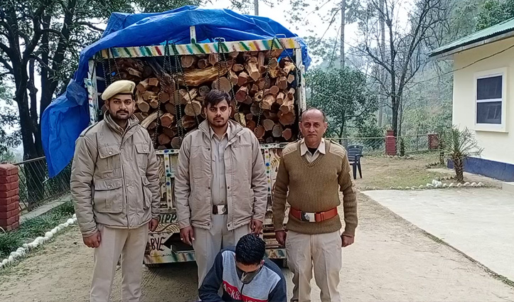 बिलासपुर के बधघाट में पकड़ी खैर की लकड़ी से लदी जीप