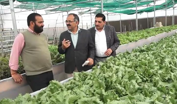 Una का युसूफ हरियाणा के उद्यान प्रशिक्षण संस्थान को सिखाएगा हाइड्रोपोनिक तकनीक खेती