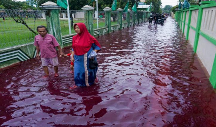 इंडोनेशिया की सड़कों पर बह रहा खून जैसा लाल पानी, हकीकत जानने के लिए करें क्लिक
