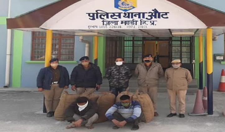 #Himachal में यहां 65 किलो अफीम और 98 किलो नागछतरी के साथ तीन Arrest