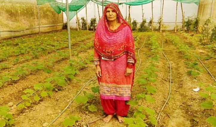 Dehra : खबली की शोभा- खुद भी बनी स्वावलंबी, औरों को भी दिखा रहीं राह