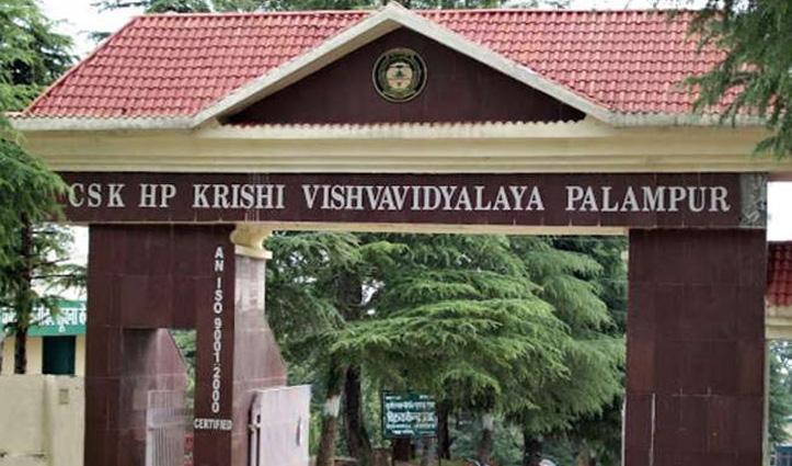 हिमाचल कृषि विवि में भरे जाने वाले पदों की लिखित परीक्षाओं का शेड्यूल तय