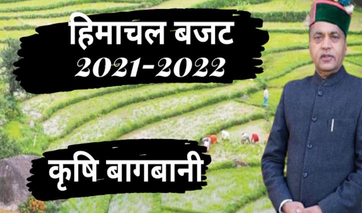 Himachal Budget 2021 : कृषि-बागवानी के लिए जयराम के बजट में क्या कुछ दिया गया