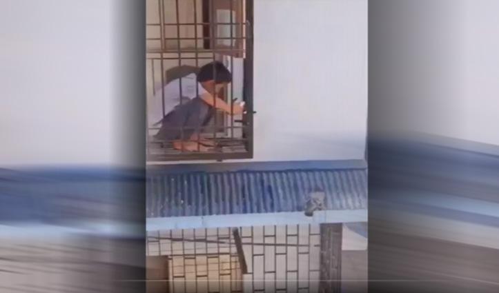 बालकनी में बैठा था प्यासा कबूतर, छोटे बच्चे ने ऐसे बुझाई प्यास, देखिए दिल छूने वाला वीडियो