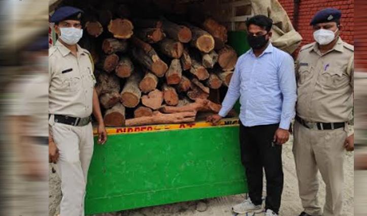 Himachal : खैर की लकड़ी से भरी थी पिकअप, नाके पर पुलिस ने गाड़ी सहित दबोचा चालक