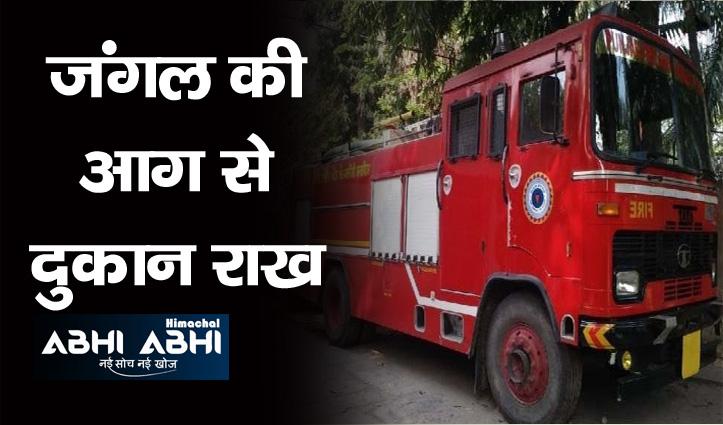 Himachal : जंगल की आग पहुंची जौड़बड़ बाजार, होलसेल की दुकान जलकर राख
