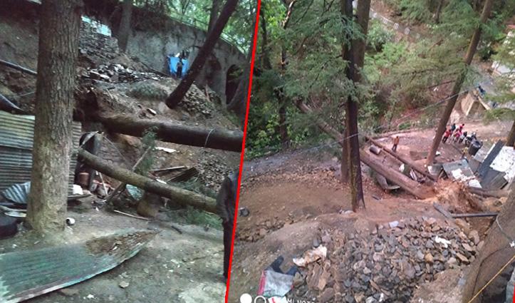 Shimla में हवा से गिरा पेड़, सड़क चौड़ी करने के काम में लगा मजदूर घायल