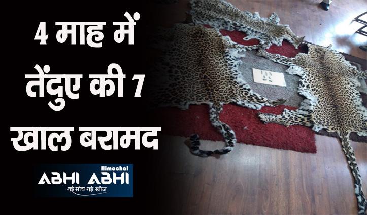 Himachal में तस्करों के निशाने पर बेजुबान, इस साल अब तक 22 गिरफ्तार