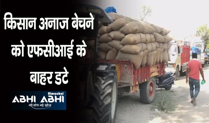 किसानों में गेहूं बेचने को लेकर मचा हाहाकार, 2 दिन बाद खत्म हो जाएगी डेडलाइन