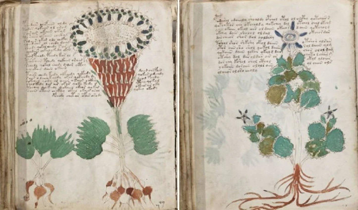 15वीं सदी में लिखी गई दुनिया की इस किताब को आजतक कोई भी नहीं पढ़ सका