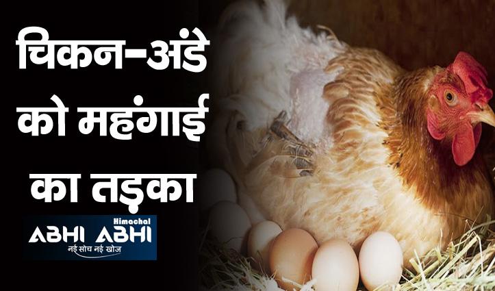 अंडों के बढ़ रहे दाम-चिकन के रेट में उछाल की ये रही वजह-एक क्लिक पर जाने