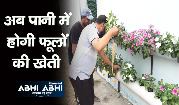 फूलों के शौक़ीन भूमिहीनों के लिए अच्छी खबर, अब घर की छत और दीवारों पर उगा पाएंगे फूल
