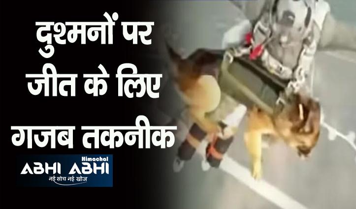 अब इंसानों की तरह हवा में उड़ेंगे कुत्ते, दुर्गम क्षेत्रों में दुश्मन पर करेंगे अटैक