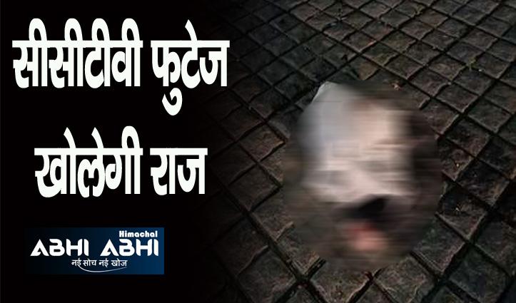हिमाचल: योल बाजार में पशु की कटी टांग मिलने से दहशत, लोगों में आक्रोश