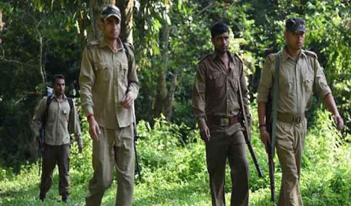 हिमाचल: वन रक्षकों के 15 पदों पर 11 हजार से अधिक आवेदन