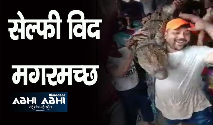 मध्य प्रदेश के शिवपुरी में सड़क पर निकले बड़ी संख्या में मगरमच्छ, लोग ले रहे सेल्फी