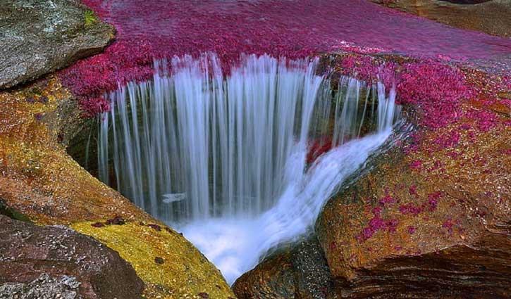 ये नदी जो बदलती है रंग, आखिर क्या है इसके पीछे का राज