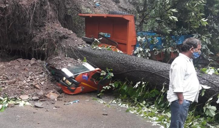 शिमला में सड़क किनारे खड़े कैंटर पर गिरा पेड़, लग गया जाम